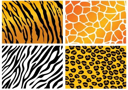 Peau animale motif de fond vecteur Banque d'images - 16318779