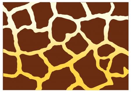 human skin texture: giraffe pattern vector