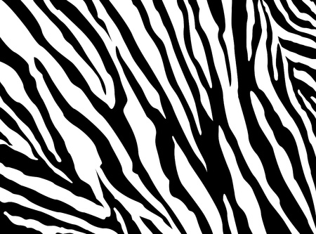 Zebra Pattern Stock Vector - 20733823