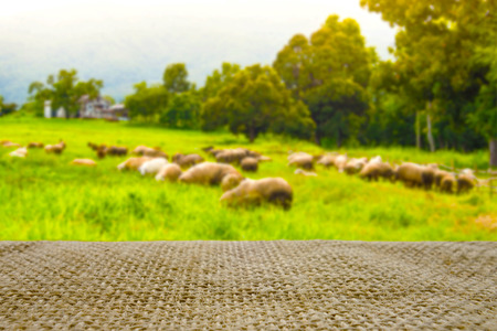 empty table with sack and blur farm sheep background can be used for product display template