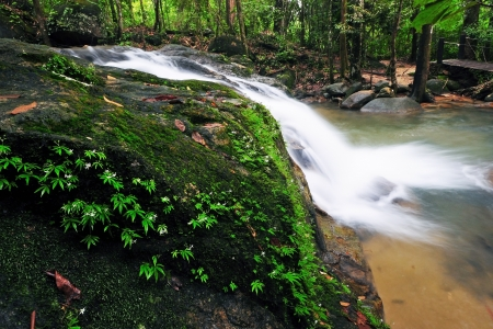 namtok: Waterfall in Thai National Park, Namtok Phile Waterfall, Namtok Phile National Park, Chanthaburi Province, Thailand Stock Photo
