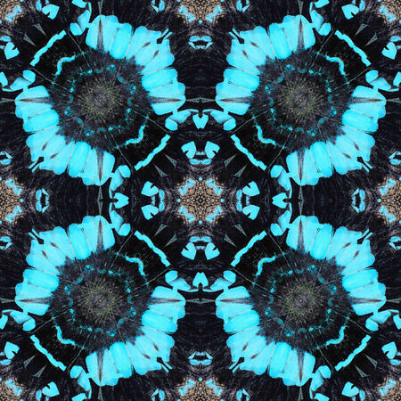 Colorful background pattern made from butterfly wing photo