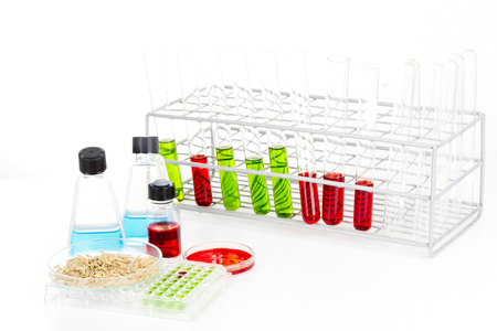 Laboratory science lab equipment containing colored liquids experiment