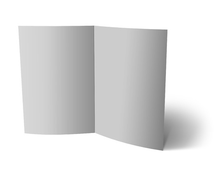 flier: blank folded paper leaflet or flier mock up in DL size