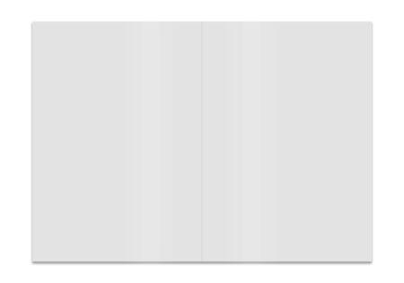 flier: blank folded paper leaflet or flier mock up in DL size