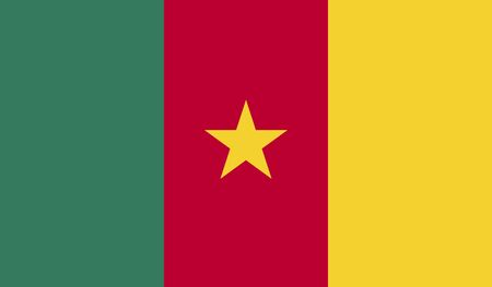 cameroon: background of cameroon flag