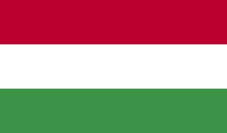 헝가리 국기 스톡 콘텐츠