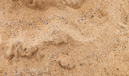 Sand on the beach texture background