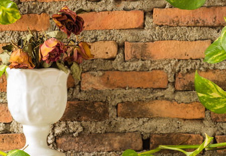 Four dying rose in white vase with devil photo