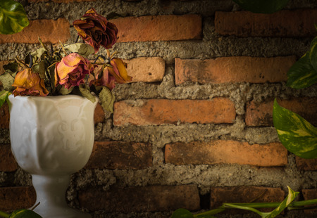 dying: Four dying rose in white vase with devil