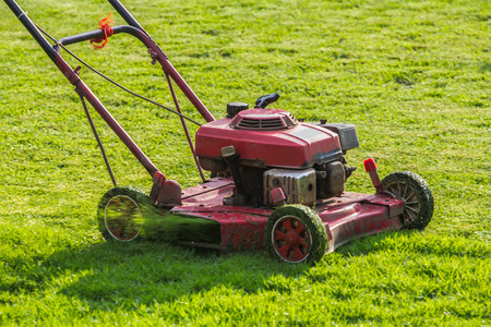 mowing grass: Mower is mowing grass in the sunny. Stock Photo
