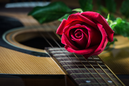 Still life rose and old guitar .  ( selective focus )
