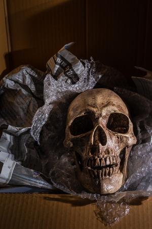 threaten: Still life skull on air buble and Newspaper in box.  concept  \ Some bad guy send skull for threaten or some friend sand toy skull make it for joke.