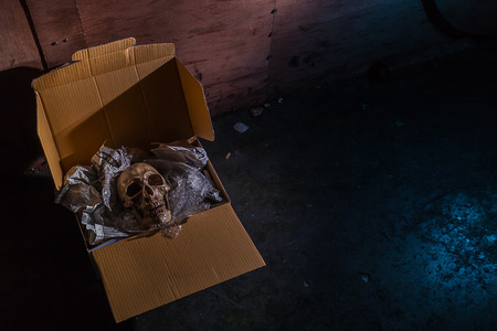 vengeful: Still life skull on air buble and Newspaper in box.  concept  \ Some bad guy send skull for threaten or some friend sand toy skull make it for joke.
