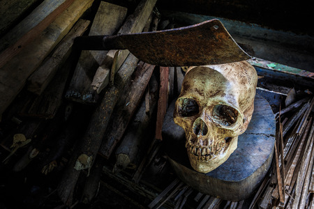 Still life skull, chopping knife  and  firewood. Abstract concept \When human use firewood non stop The death is coming to. photo