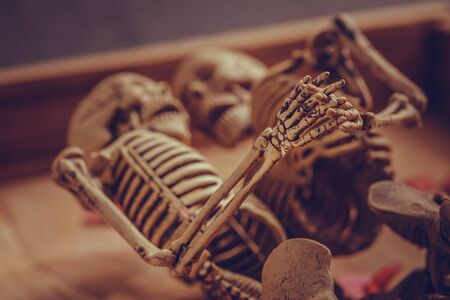 endlessly: Romantic skeleton holding hand for eternal love. Selective focus on hand and finger. Stock Photo