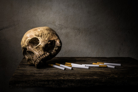 toxin: Still life skull and cigarette people smoke cigarette and get toxin body look like way to die. In the day  World No Tobacco Day please quit or stop smoke for good health.