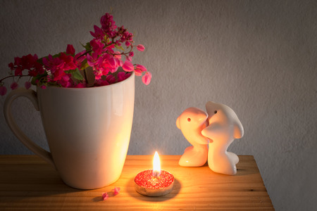 doublet: Couple lovers dolphin and  white mug coffee and the Antigonon leptopus  flower in the light red candle.