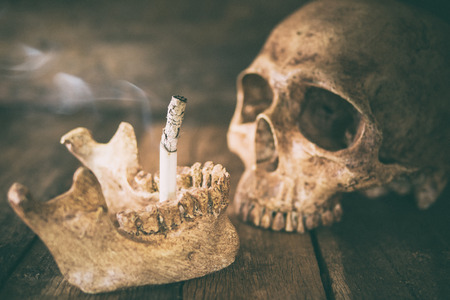 Still life skull and cigarette burned with smoke on wood.