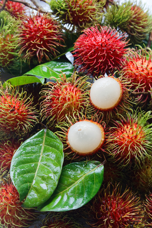 fresh rambutan with green leaf. Foto de archivo - 111018422