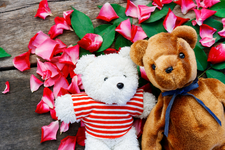 Two Toy bear doll have falling in love with Rose petals background in  valentine day. Foto de archivo - 122521237