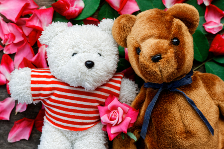 Two Toy bear doll have falling in love with Rose petals background in  valentine day.