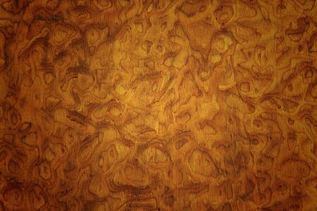 Wood texture on cabinet Stock Photo - 21920225