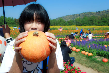 jim: Nakhonratchasima Thailand - January 2: Undefined girl with a pumpkin at flower garden of Jim Thompson Farm Tour 2014, This is Farming learning on January 2, 2015 at Nakhonratchasima Thailand