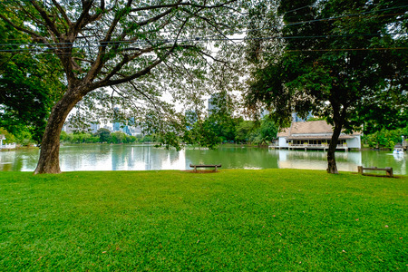 actividades recreativas: A lake view of Lumpini Park in Bangkok. Lumpini Park offers many recreational activities for citizens along with the place to help homeless children in Bangkok.
