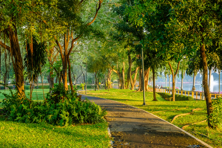 Curved empty cycle road under trees in public park outdoor natural environment place for rest and walking in morning fresh weather time with sun rays and light through branches. Stock Photo