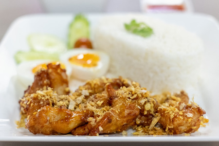 Fried Chicken with Garlic Pepper and boiled egg on Rice, Thai style food Stock Photo
