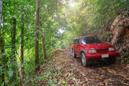 Red suv summer car and road in mountains Driving in forest dirt road Free space for your decoration Green forest background Countryside mood adventure
