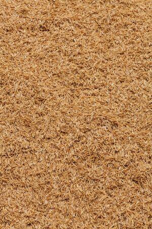 husk: El arroz c�scara fondo