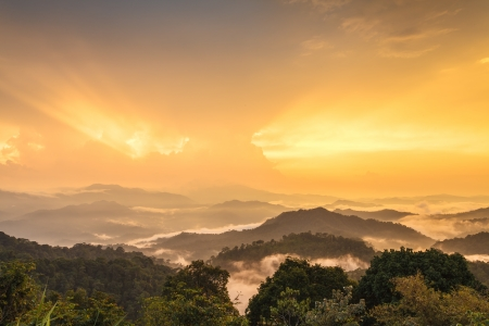 Sunset in rainforest, Thailand