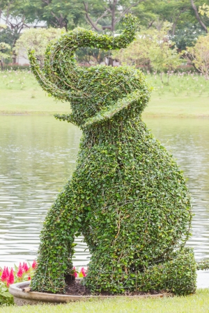 Bush trimmed into elephant shape