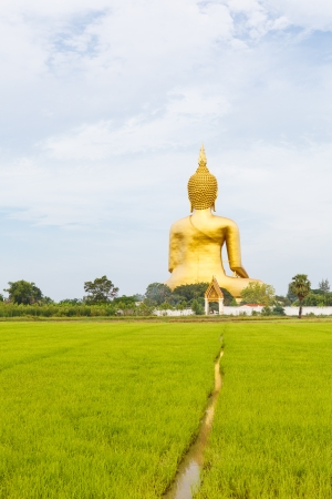 The Big Golden Buddha photo