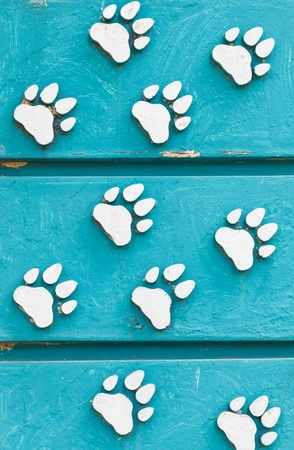 animal footprint sign photo