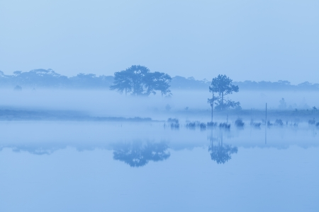 Early morning on river photo