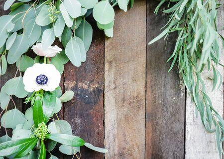 leaf plant over wood fence background