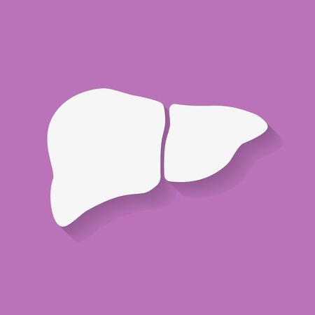 higado humano: Icono de h�gado humano. Estilo Flat Vectores