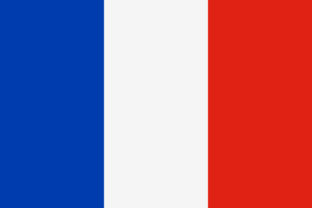 Flag of France Vettoriali