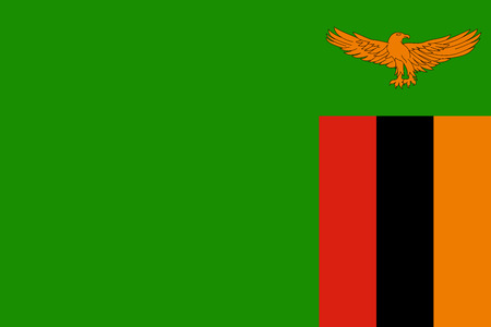 zambia: Flag of Zambia Illustration