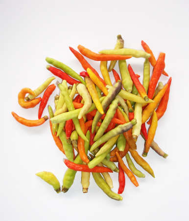 Capsicum frutescens Linn. Stock Photo - 10667120