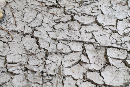 Drought land Stock Photo - 11905930
