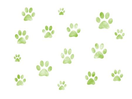 dog paw: Dog tracks.
