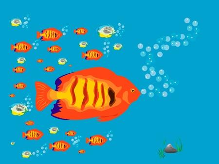 Fish Stock Vector - 12232168