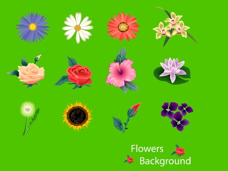 flower background Stock Vector - 12576780