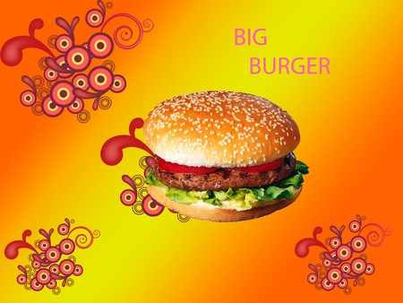 Burger Stock Photo - 12554111