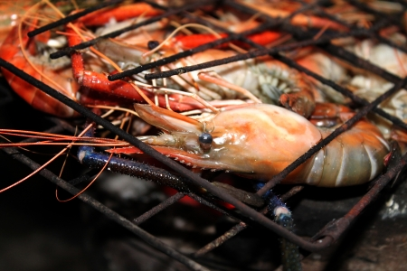 Grilled prawns on the grill  Stock Photo
