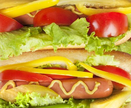 close up of hot dog with fresh tomato, salad, yellow peppers and pickled cucumber seasoned with mustard